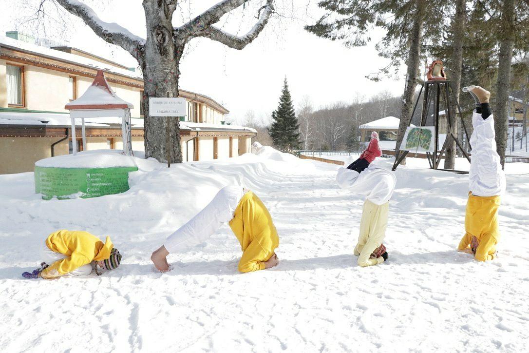 Yoga-Asanas-Sivananda